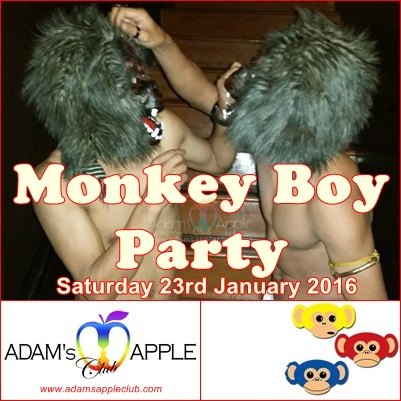 Monkey Boy Party Gay Bar Chiang Mai