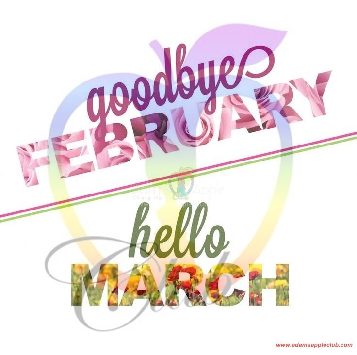 Goodbye February Hello March   Adams Apple Club Chiang Mai