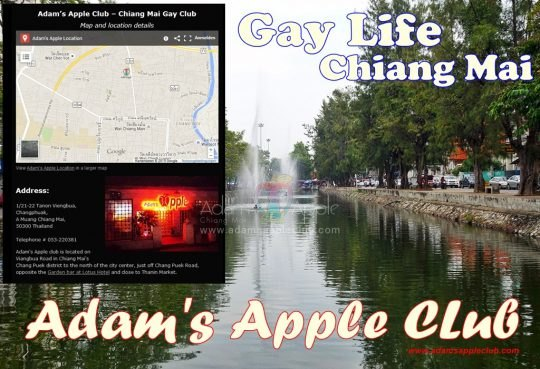 Chiang Mai Gay Life Adams Apple Club