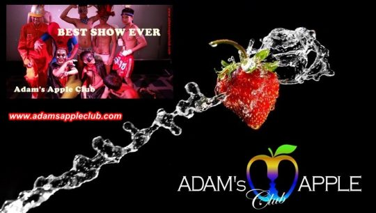 Adams Apple Club Best Show Gay Bar Chiang Mai
