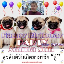 MEGA BIRTHDAY PARTY for our Mama Sun