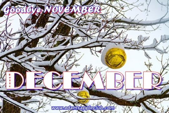 Hello December 2018 Adams Appel Club