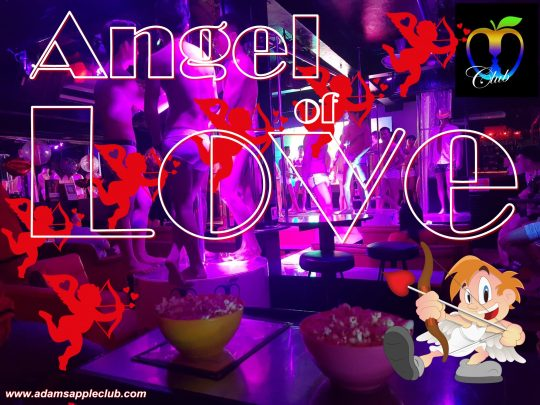 Angel of Love Adam's Apple Club Chiang Mai