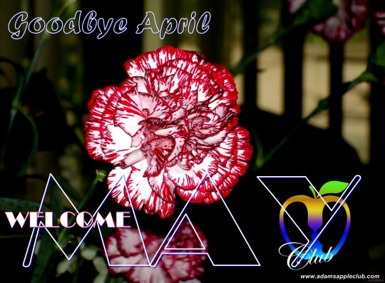 Hello May Adams Appler Club CNX