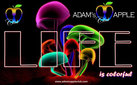 LIFE is colorful Adams Apple Club Chiang Mai