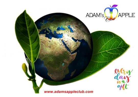 Every Day is a Gift! Adams Apple Club CNX