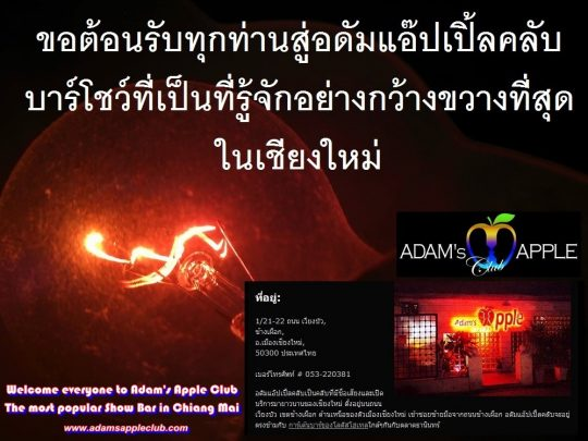Adams Apple Club The most popular Show Bar in Chiang Mai