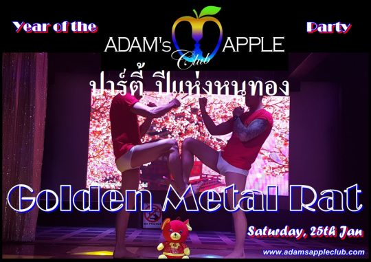 Year of Golden Metal Rat Adams Apple Club