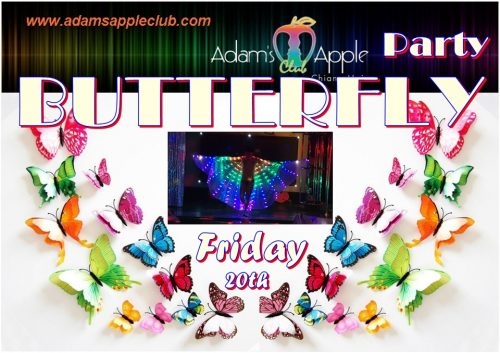 BUTTERFLY Party Adams Apple Club