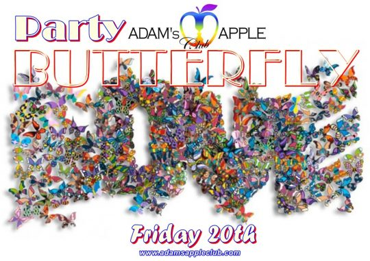 Butterflies ผีเสื้อราตรี Adam's Apple Club Chiang Mai