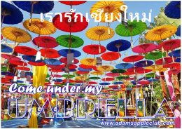 Come under my UMBRELLA Chiang Mai