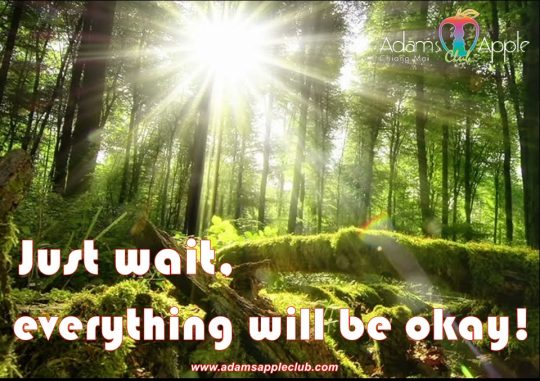 Just wait, everything will be okay! Adams Apple Club