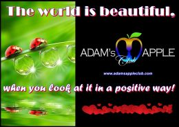 Beautiful World Adam's Apple Club Host Bar Chiang Mai