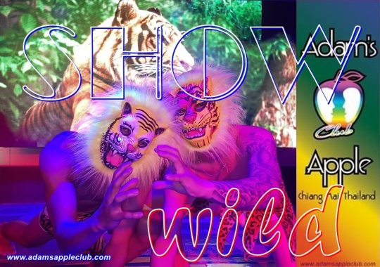 Wild Show Adams Apple Gay Club Chiang Mai Host Bar