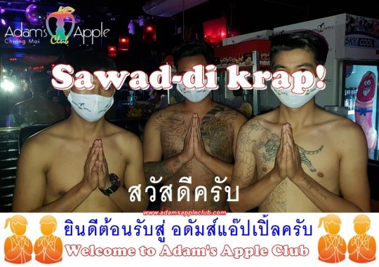 Sawad di khrap! Adams Apple Club Chiang Mai Gay Bar Thailand. Most Exciting Shows @ Adams Apple Club Chiang Mai, Thailand