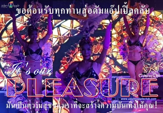 Ladyboy Cabaret It is our pleasure Adams Apple Club Chiang Mai