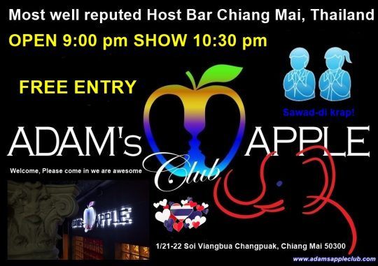 Bar Host Chiang Mai Adams Apple Club Thailand Ladyboy
