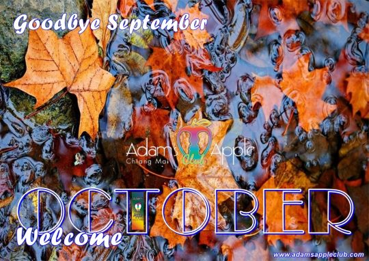 WELCOME OCTOBER 2020! Our Team wish YOU a beautiful OCTOBER 2020! Enjoy YOUR Gay Life in Chiang Mai. Adult Entertainment Go-Go Bar