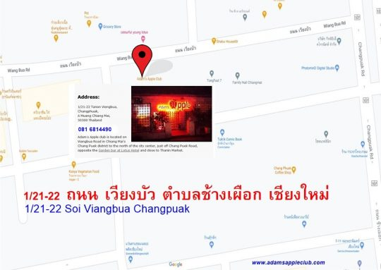 The Way to us! Location Gay Bar Chiang Mai Adams Apple Club Adult Entertainment Nightclub Go-Go Bar with live Shows Ladyboy Cabaret and handsome Asianboys