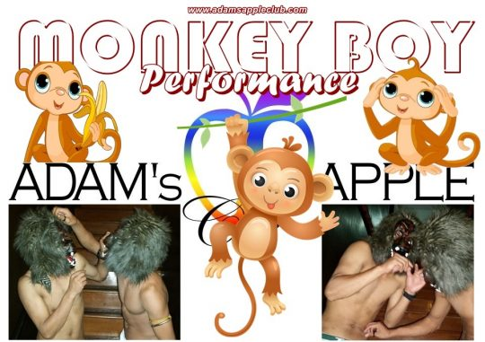 MONKEY BOY Performance Adult Entertainment Chiang Mai Gay Bar Host Bar Nightclub Adams Apple Club Go-Go Bar Asian Boy Liveshows