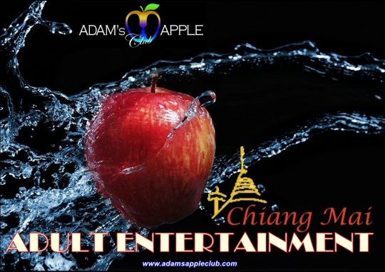 Adult Entertainment in Chiang Mai Adams Apple Club Thailand most well-reputed Gay Bar Ladyboy Cabaret Nightclub Host Bar Asian Boy Performances