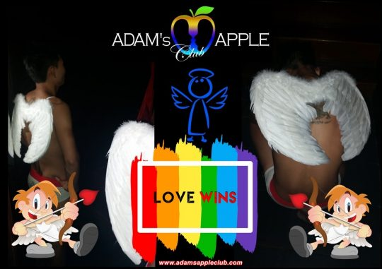 LOVE WINS Adult Entertainment Chiang Mai Host Bar Gay Bar Go-Go Bar Nightclub Ladyboy Cabaret Performance and Asian Boy Shows