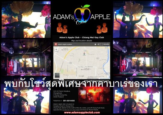 See a special show from our Ladyboy Cabaret 1st class Adult Entertainment Host Bar ChianG mai Gay Bar Nightclub Nightlife Thailand Asian Boys