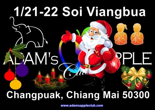 Christmas time with us at Adam's Apple Club in Chiang Mai Adult Entertainment Host Bar Gay Bar Nightclub Nightlife Ladyboy Cabaret Kathoy