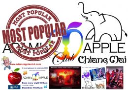 Popular Bar Chiang Mai Adams Apple Club Adult Male Entertainment Nightclub with Liveshow Ladyboys Cabaret Asianboys Host Bar Gay Club Thai Boy