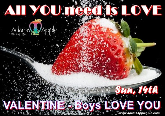 All YOU need is LOVE Valentine 2021 Boys LOVE YOU Gay Bar Chiang Mai Adult Male Entertainment Nightclub Host Bar Gay Club with Liveshow Ladyboy Asian Boys
