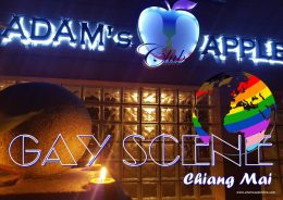 GAY SCENE Chiang Mai Adams Apple Club Bar Gay and Host Club to meet BOYS in Chiang Mai we recommend our nightclub with ladyboy liveshows asianboys