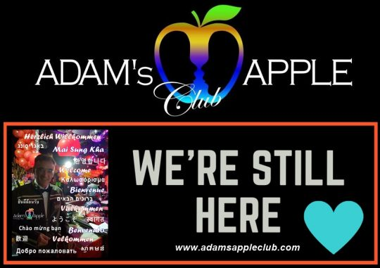 We are still here for YOU Adam's Apple Club Chiang Mai Gay Bar Nightclub with Ladyboy Live Shows Adult Male Entertainment Thai Boys Gay Scene