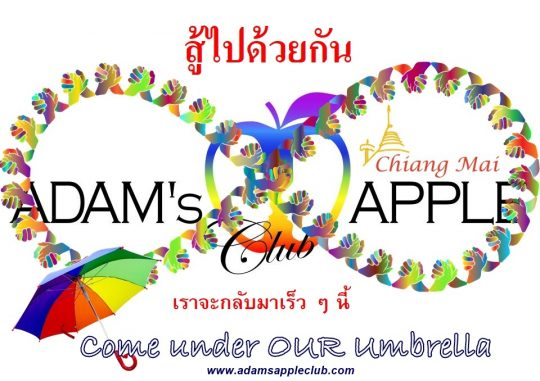 Come under OUR umbrella Adams Apple Club Gay Bar Chiang Mai. To all of our friends around the world we miss YOU LGBTQ