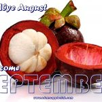 Welcome SEPTEMBER 2021 Adams Apple Club Gay Bar Chiang Mai Let us pray together that we will survive this difficult time in good health